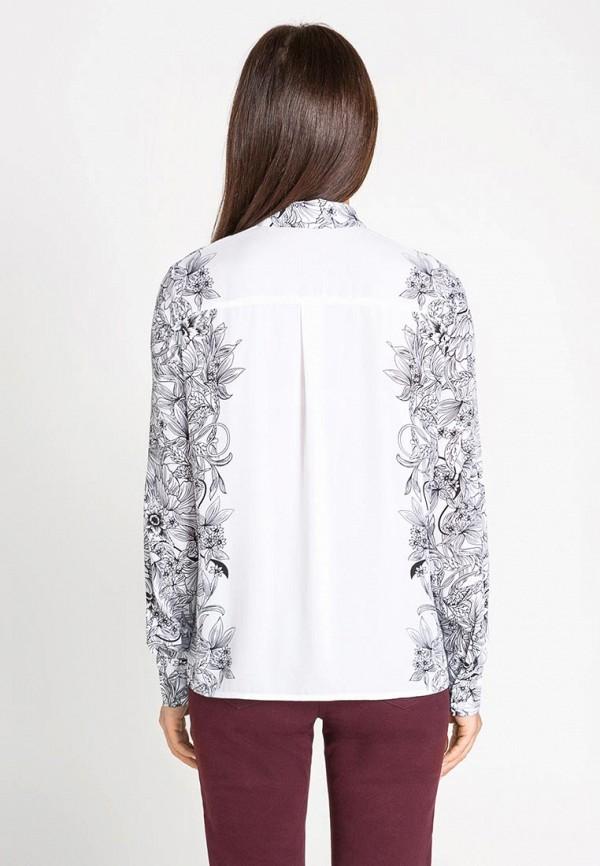 Блуза Bestia 40200260086: изображение 5