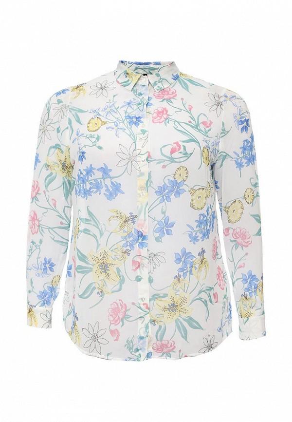 Блуза Bestia Donna 41200260055: изображение 1