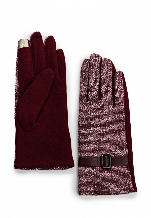 Женские перчатки Be... G16126: изображение 1
