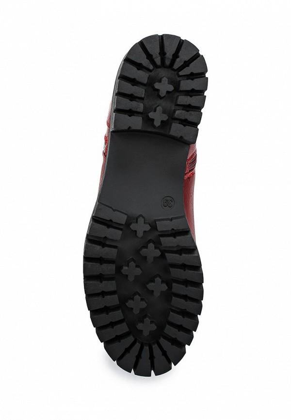 Сапоги на каблуке Bellamica JL03: изображение 3