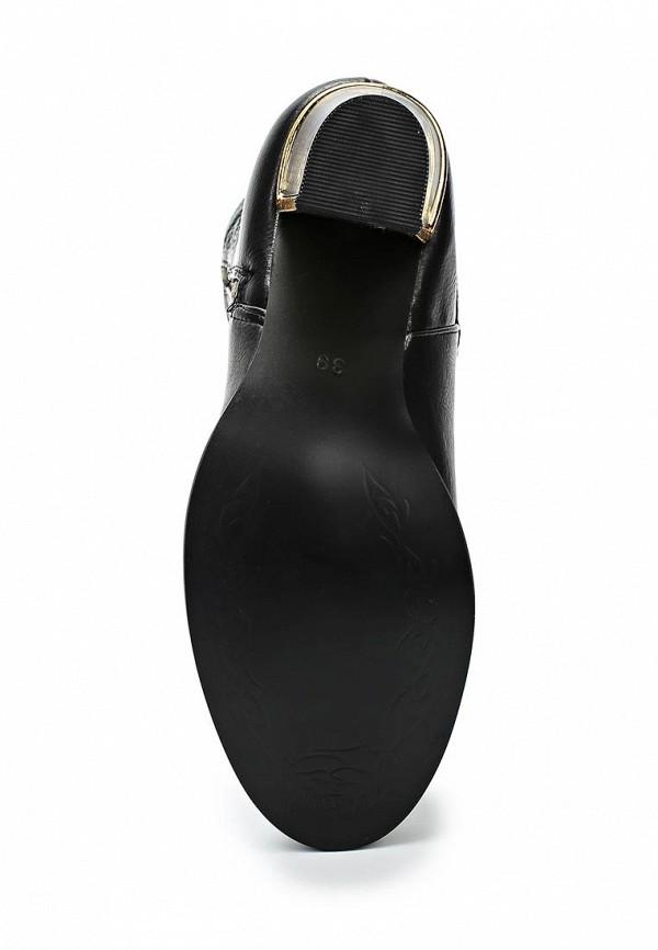 Сапоги на каблуке Bellamica JL502: изображение 3