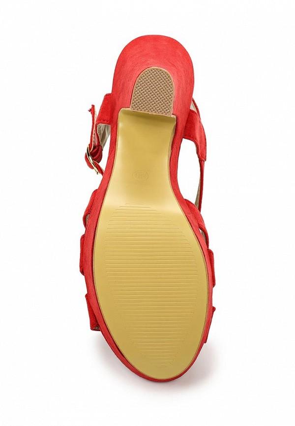 Босоножки на каблуке Bellamica F24-B-255-E: изображение 3