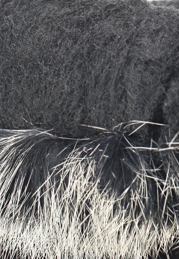 Женские угги Bearpaw 1689W: изображение 11