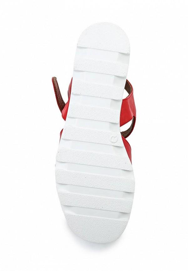 Женские босоножки Bigtora 1583-06: изображение 3