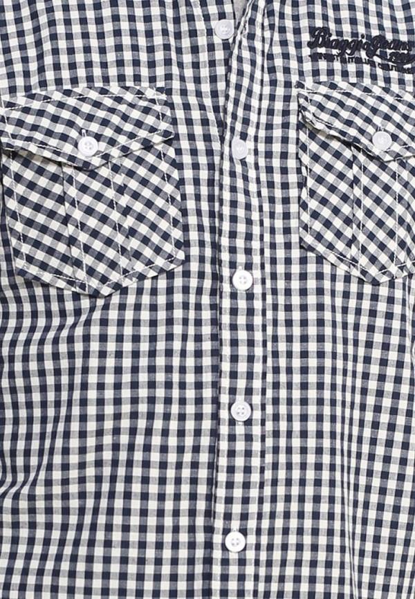 Рубашка с длинным рукавом Biaggio SU12BGG00001: изображение 6