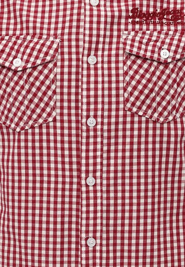 Рубашка с длинным рукавом Biaggio SU12BGG00001: изображение 7