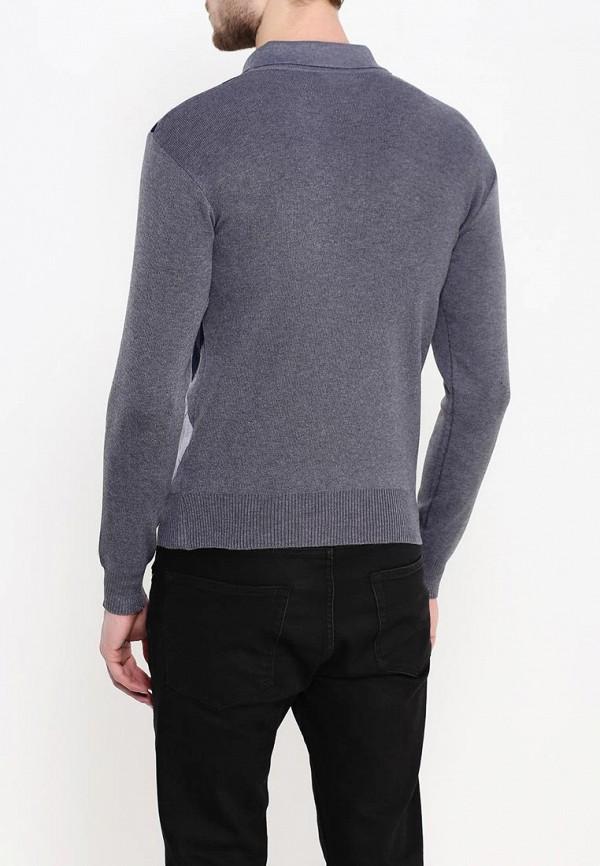 Мужские поло Blue Fashion R14-H1518-2: изображение 4