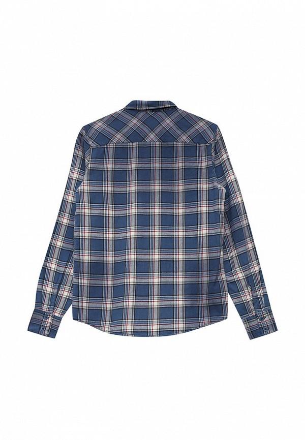 Рубашка Blukids 1412711: изображение 2