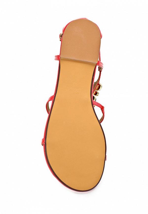 Женские сандалии Blink 801995-H-33: изображение 3