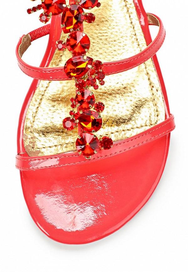 Женские сандалии Blink 801995-H-33: изображение 6