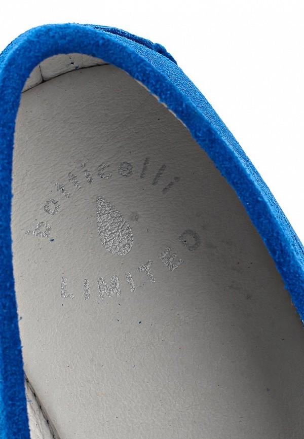 Мужские мокасины Botticelli Limited LU26311: изображение 12