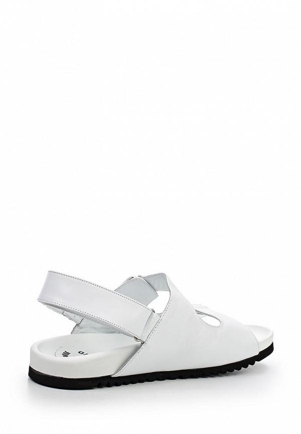 Мужские сандалии Botticelli Limited LU29493: изображение 2