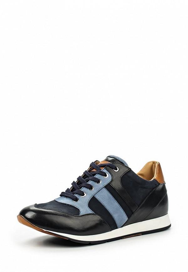 Мужские кроссовки Botticelli Limited LU32601