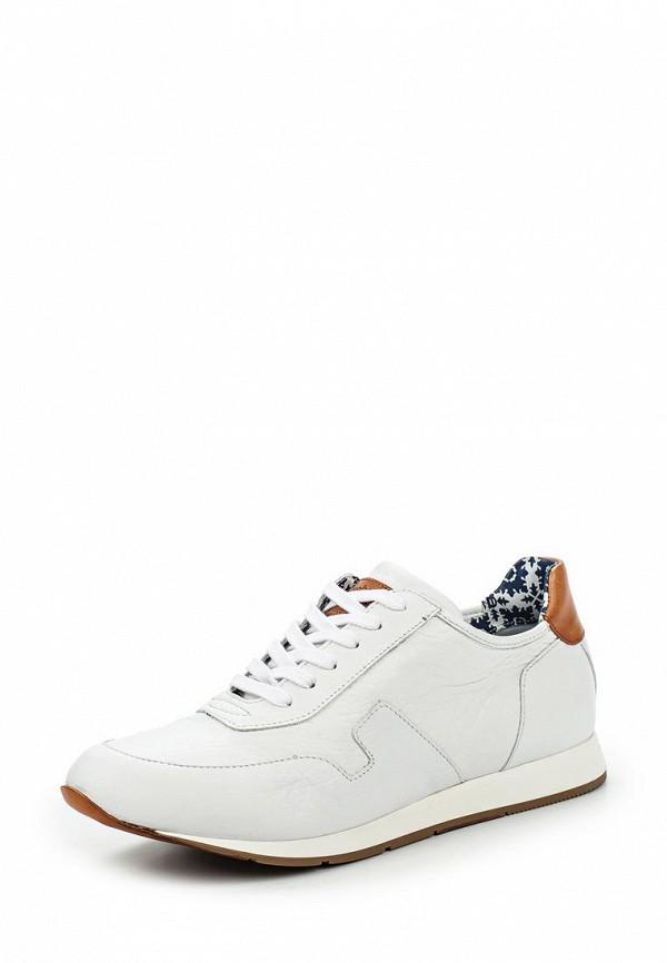 Мужские кроссовки Botticelli Limited LU32611: изображение 1