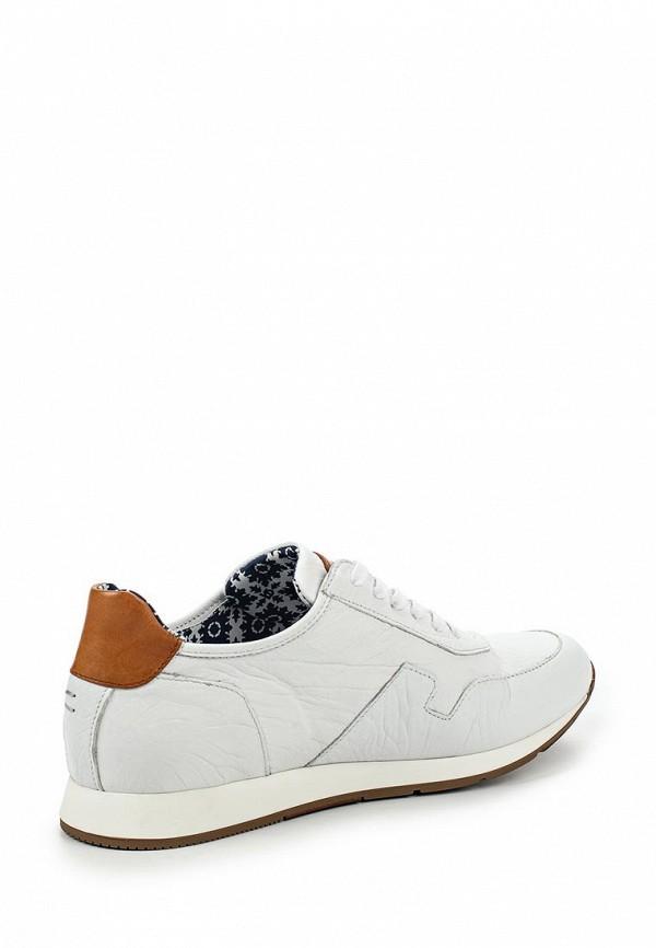 Мужские кроссовки Botticelli Limited LU32611: изображение 2