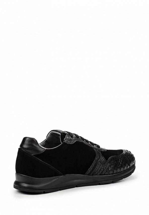 Мужские кроссовки Botticelli Limited lu33267: изображение 2