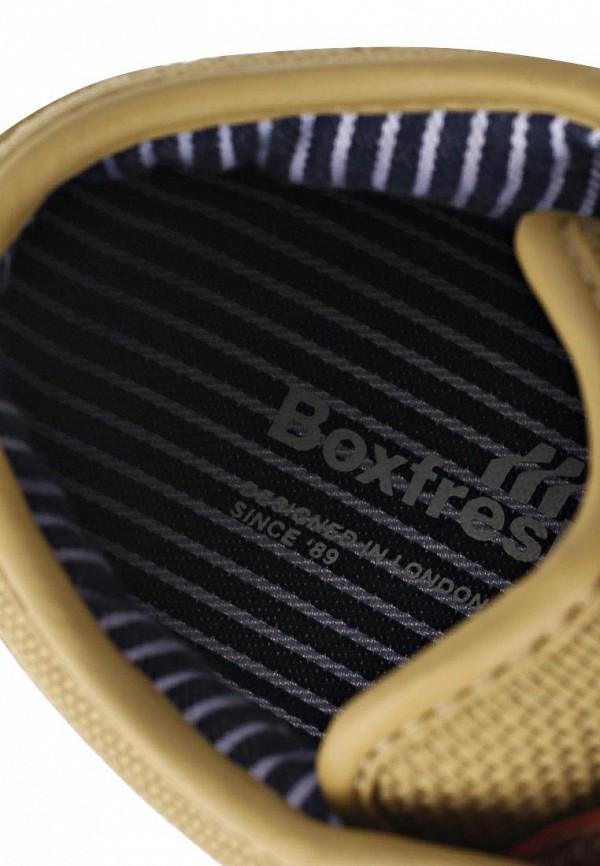 Мужские кеды Boxfresh E12860: изображение 11