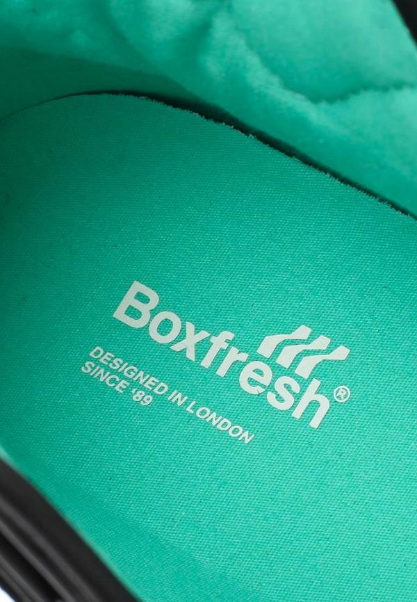 Мужские кроссовки Boxfresh E13364: изображение 11