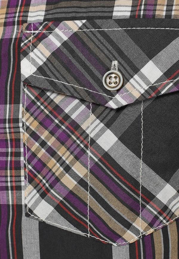 Рубашка с длинным рукавом Broadway (Бродвей) 10151641  488: изображение 3