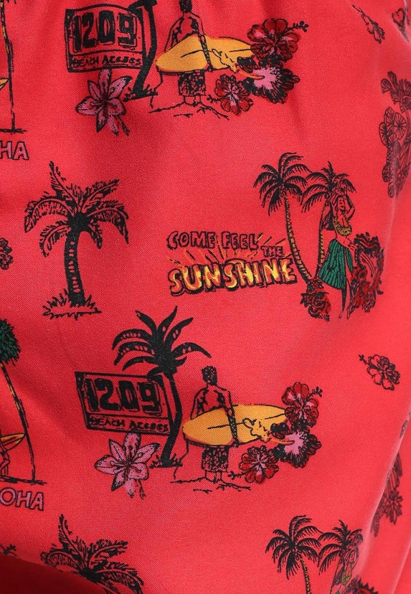 Мужские шорты для плавания Brave Soul MSRT-BARRACUDA: изображение 3