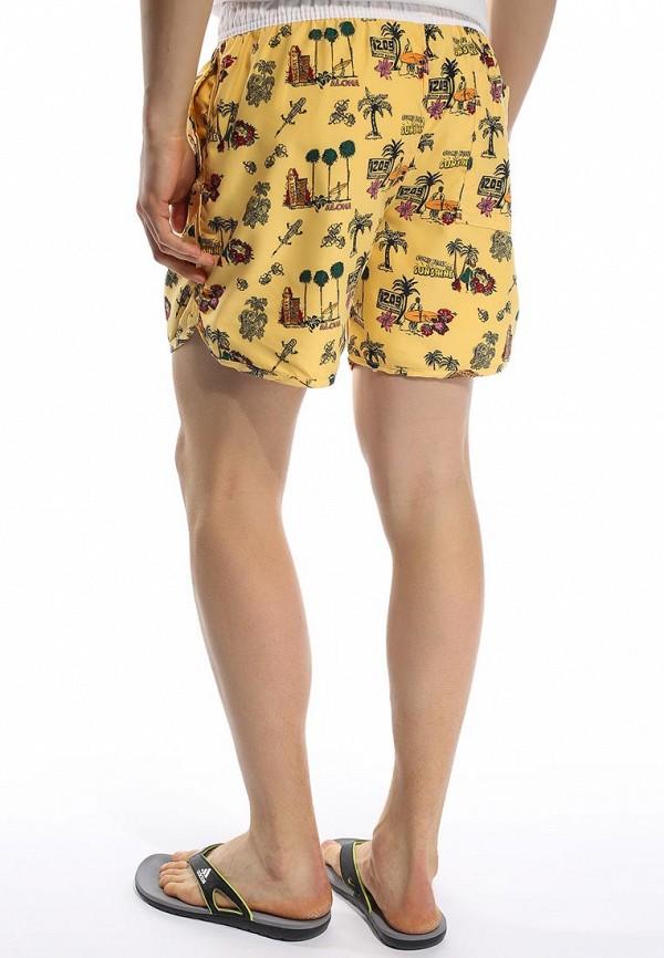 Мужские шорты для плавания Brave Soul MSRT-BARRACUDA: изображение 12