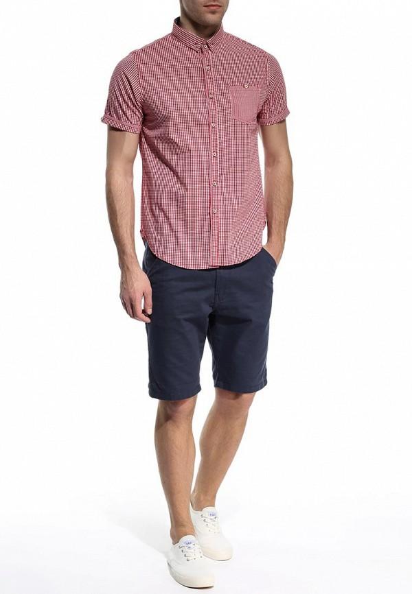 Мужские повседневные шорты Brave Soul MSRT-CAMPBELL: изображение 3
