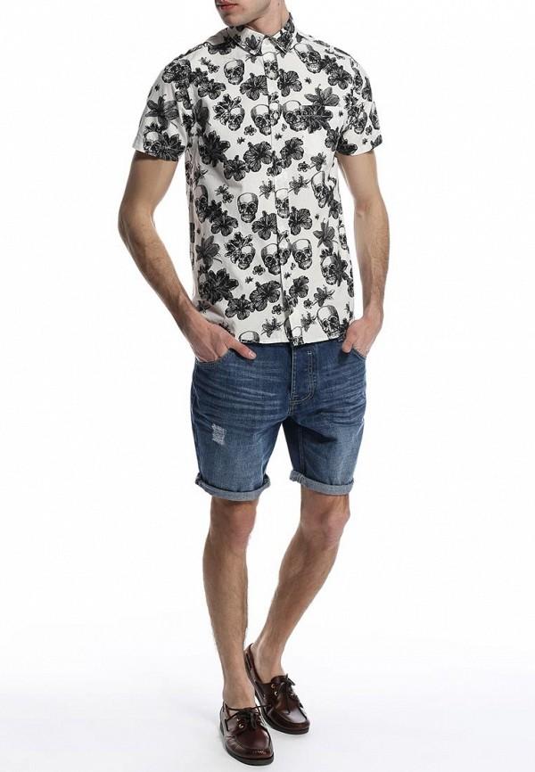 Мужские джинсовые шорты Brave Soul MSRT-WILLS: изображение 3
