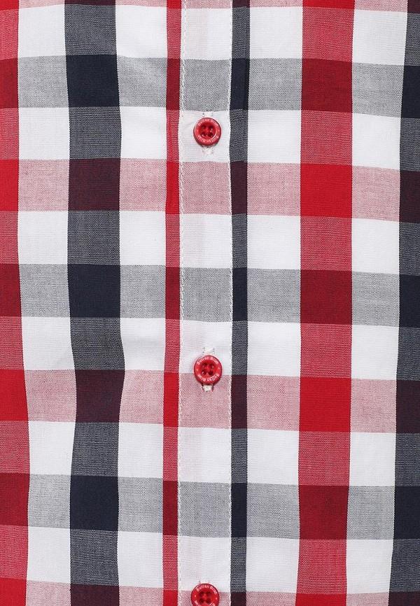 Рубашка Button Blue 116BBBB2306: изображение 3