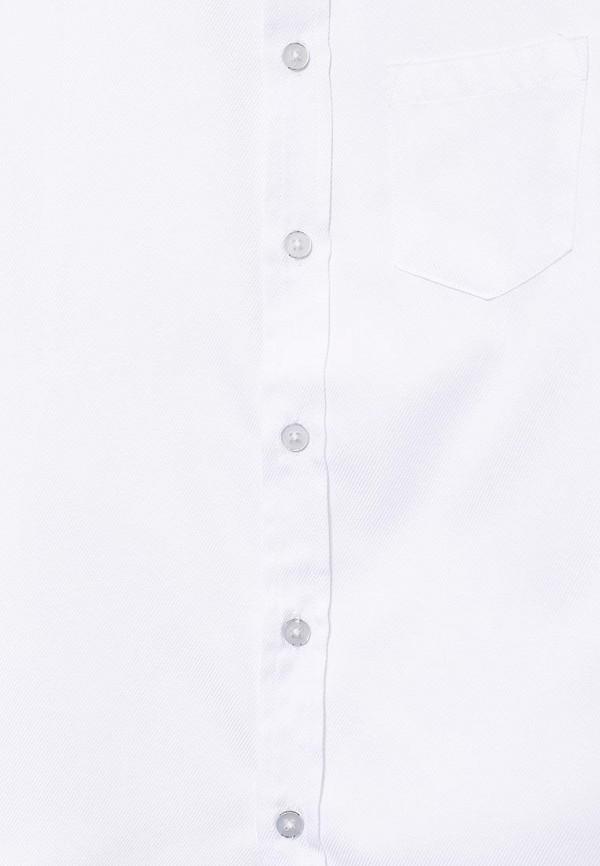 Рубашка Button Blue 215BBBS2305: изображение 5
