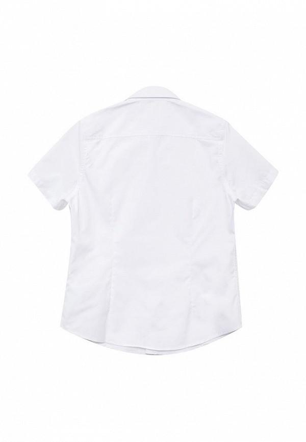 Рубашка Button Blue 215BBBS2307: изображение 4