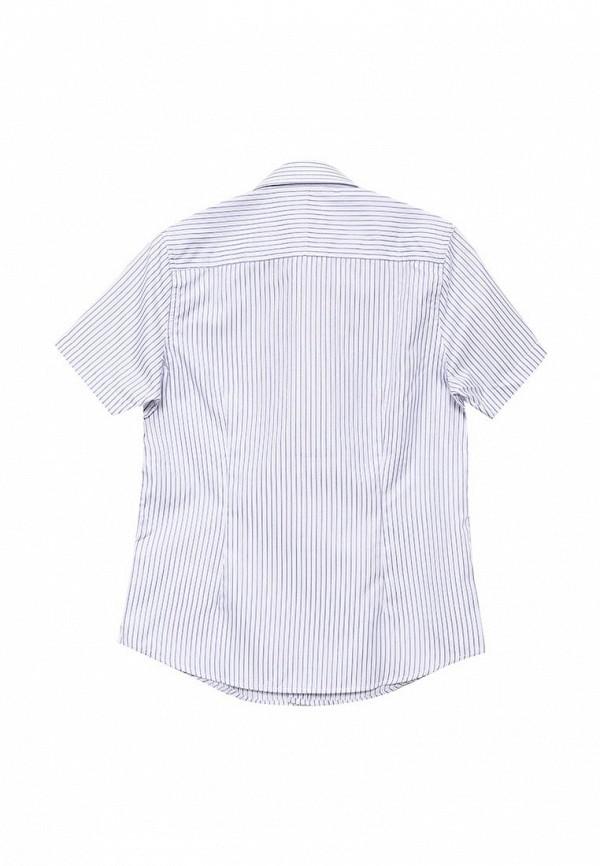 Рубашка Button Blue 215BBBS2308: изображение 4