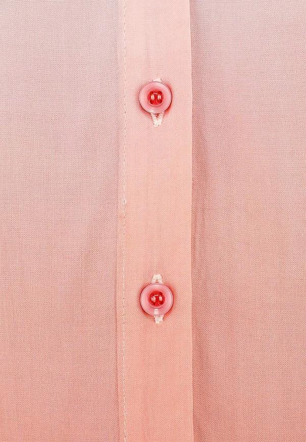 Блуза Camelot (Камелот) WT1338-SS14: изображение 4