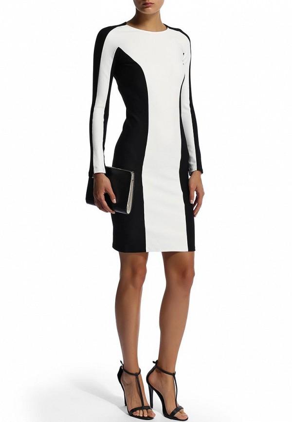 Платье-миди Camelot (Камелот) SLIM-FW14C: изображение 6
