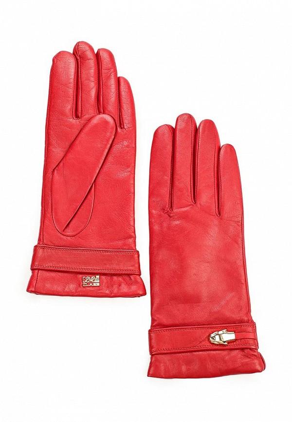 Женские перчатки Cavalli Class C63PWCLT0047060
