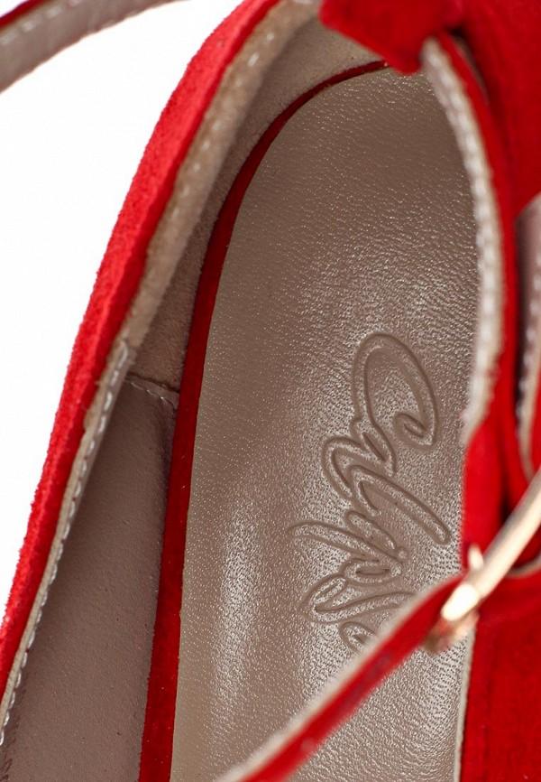 Туфли на шпильке Calipso 263-03-FX-04-VK-01: изображение 12