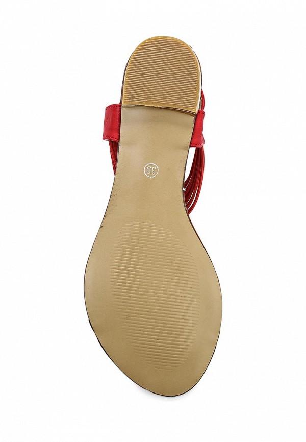Женские сандалии Calipso (Калипсо) 058-01-PHFK-04-PP: изображение 3