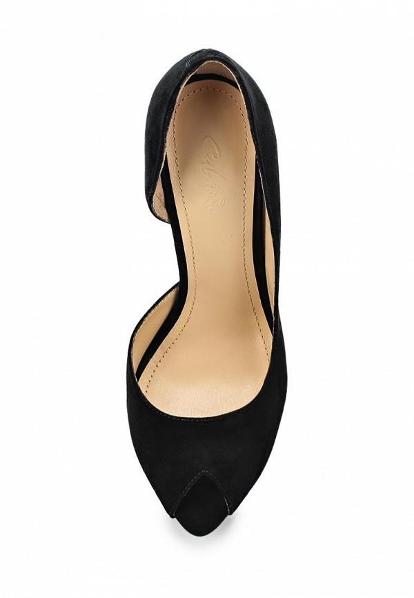 Туфли на каблуке Calipso (Калипсо) 609-03-F-01-VK: изображение 4