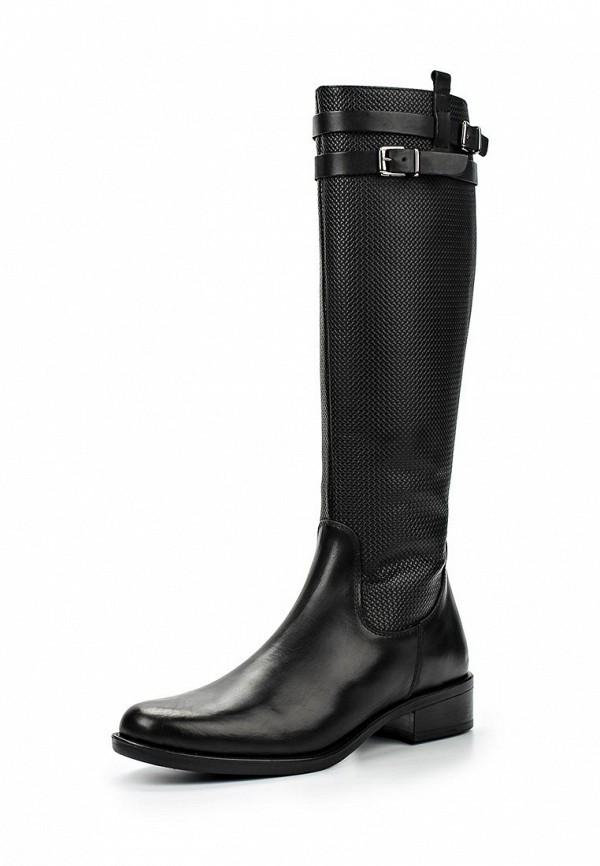 Сапоги на каблуке Calipso (Калипсо) 50661-BUB-01-KB: изображение 1