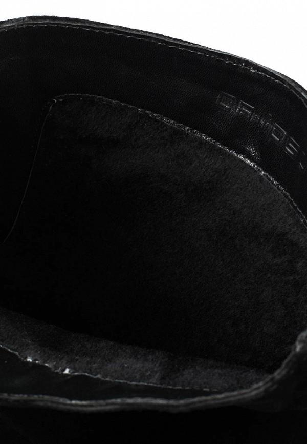 Женские сапоги Calipso (Калипсо) 203-23-HR-01-VBM: изображение 5