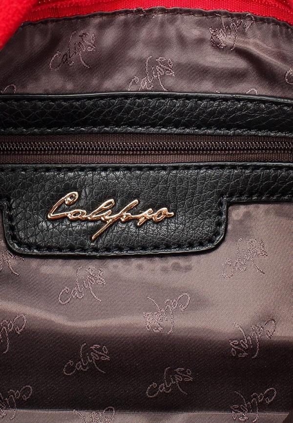 Клатч Calipso (Калипсо) 434-040987-165: изображение 4