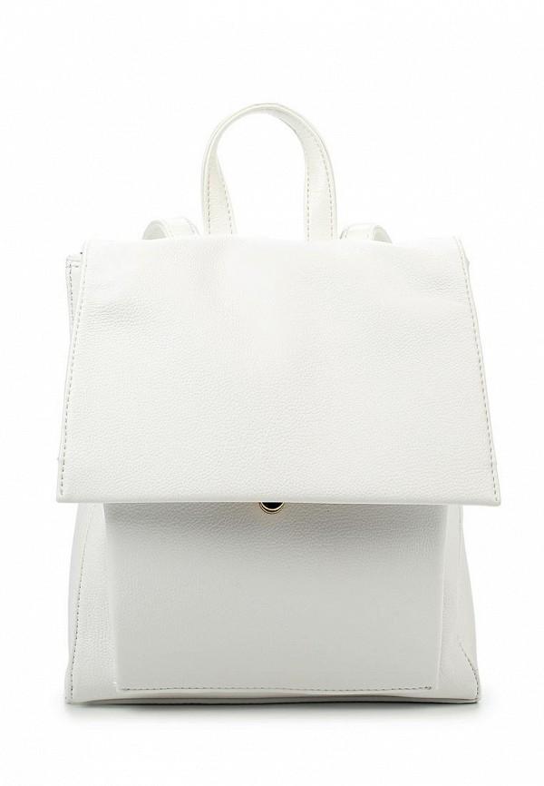 Городской рюкзак Calipso (Калипсо) 822-061288-172: изображение 1