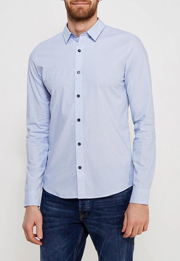 Рубашка Calvin Klein Jeans, CA939EMZJT07, голубой, Весна-лето 2018  - купить со скидкой