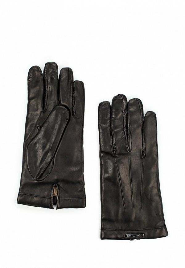 Мужские перчатки Cerruti 1881 CEMG01583