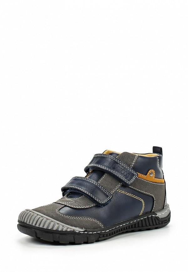 Ботинки для мальчиков Chicco 1056553000000