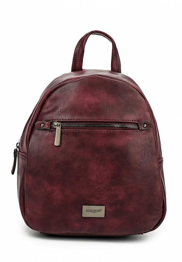 Рюкзак David Jones 5245-2_фиолетовый