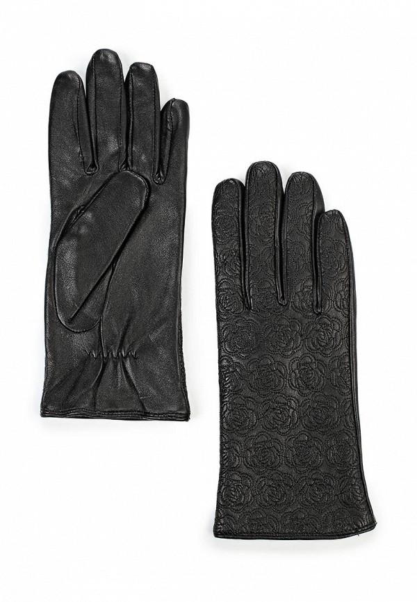 Женские перчатки Dorothy Perkins 11168901