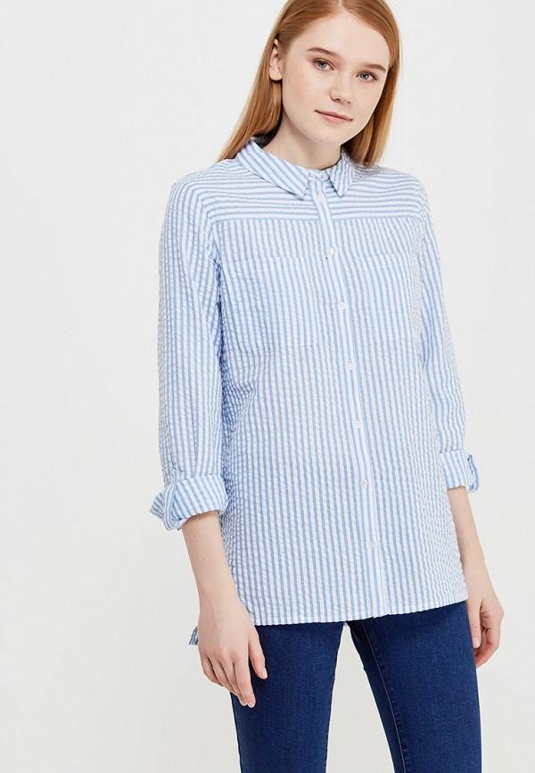 Купить Рубашка Dorothy Perkins, DO005EWAMMN7, голубой, Весна-лето 2018