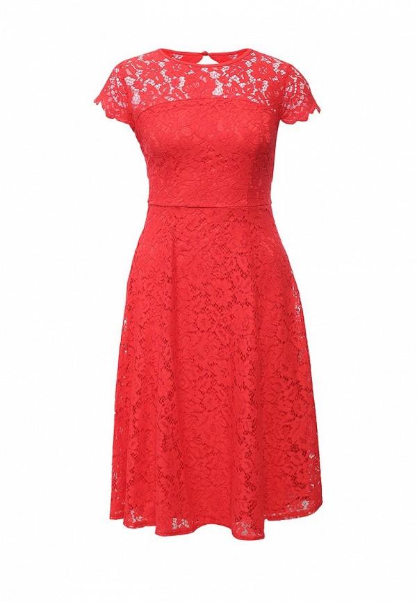 Платье-миди Dorothy Perkins (Дороти Перкинс) 7412112