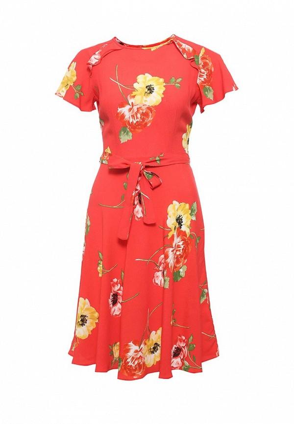 Платье Dorothy Perkins Dorothy Perkins DO005EWRRR20 платье dorothy perkins dorothy perkins do005ewsvf67