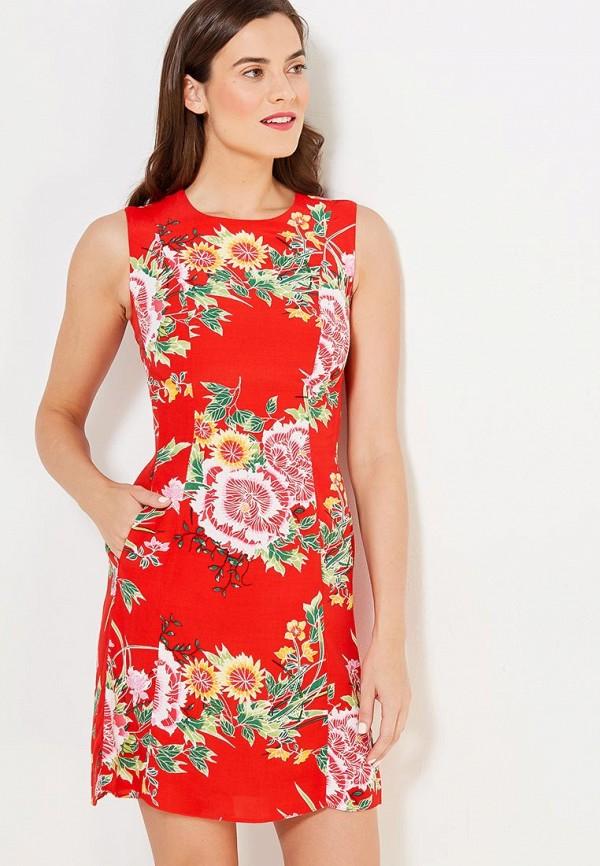 Платье Dorothy Perkins Dorothy Perkins DO005EWVHV45 топ dorothy perkins dorothy perkins do005ewium02